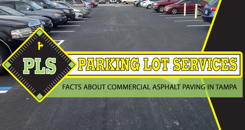 commercial asphalt paving in tampa